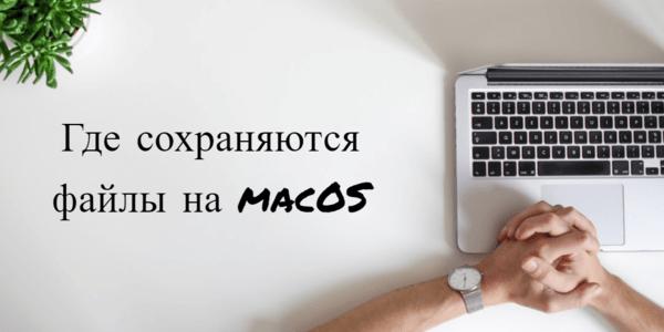 где сохраняются картинки на telegram macos - картинка