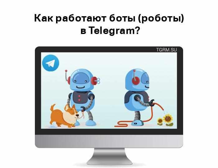 картинка: роботы в телеграм