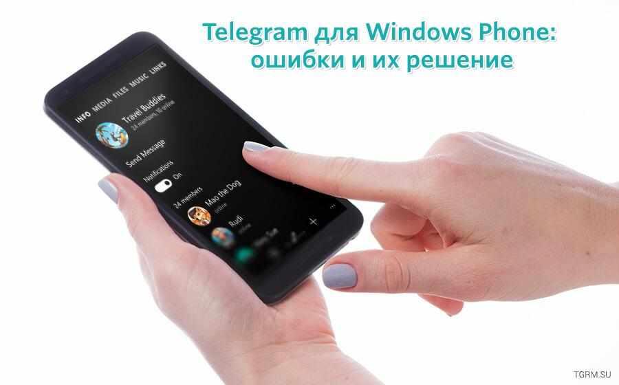 картинка: не работает telegram windows phone