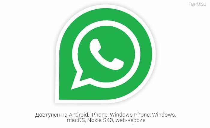 картинка: whatsapp или telegram