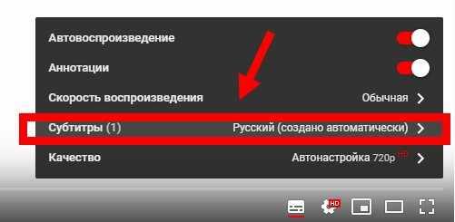 vikluchit-subtitri-youtube1.jpg