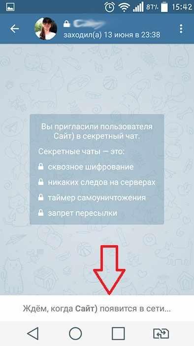 priglasit-uchastnika-sekretnyj-chat.jpg