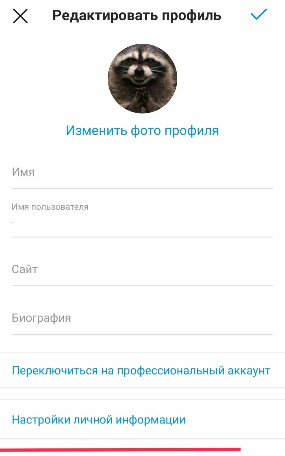 IMG_20210724_103137.jpg