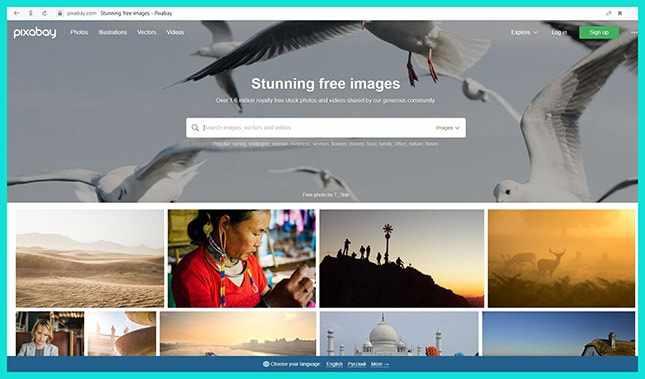 Сайт качественных и бесплатных фото Pixabay