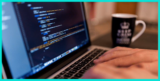 Что делает веб-разработчик