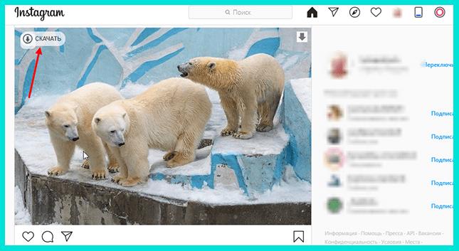 Нажмите на кнопку Скачать, чтобы сохранить фото из Инстаграма на компьютер