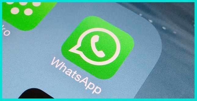 Сервис WhatsApp один из популярных мессенджеров