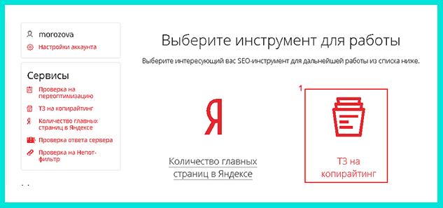 Для составления ТЗ в Пиксел Плюс нажимаем на кнопку ТЗ на копирайтинг