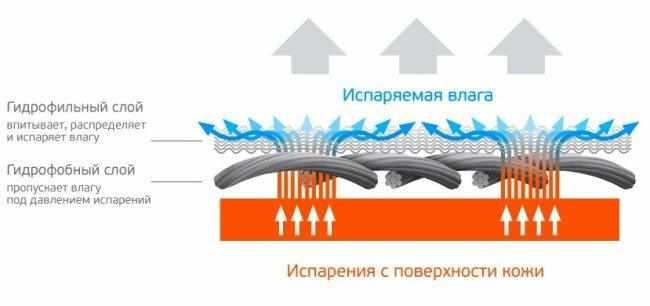 Принцип действия термобелья