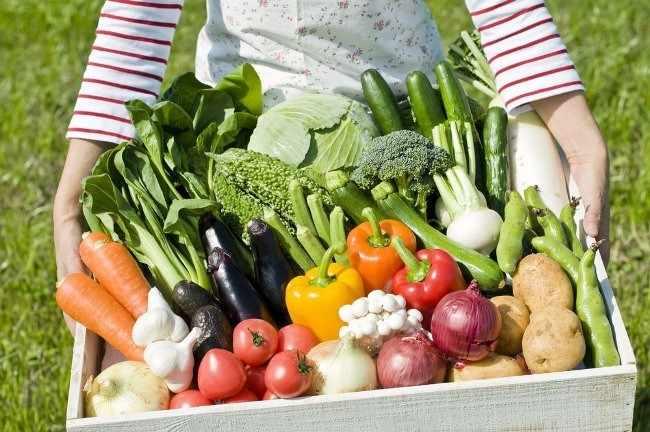 Овощи с огорода на продажу