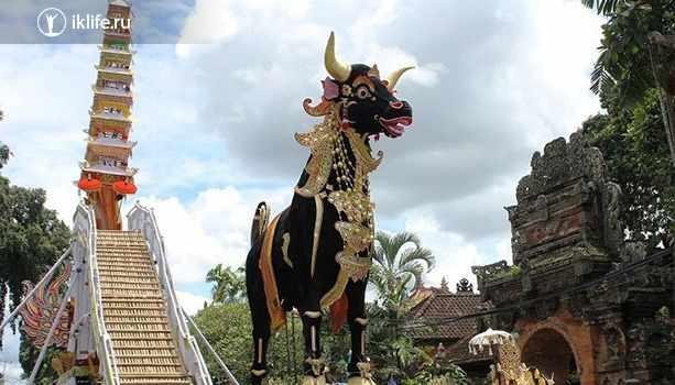 Похороны на Бали